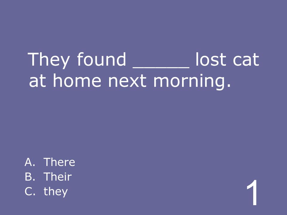 1 They found _____ lost cat at home next morning. A.There B.Their C.they