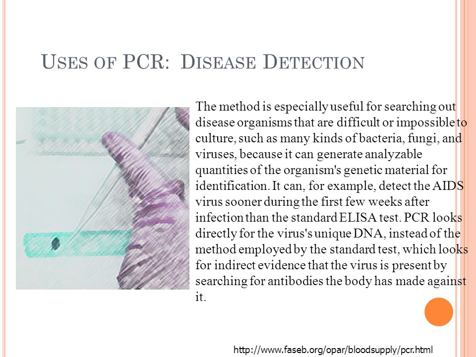 U SES OF PCR: D ISEASE D ETECTION http://www.faseb.org/opar/bloodsupply/pcr.html The method is especially useful for searching out disease organisms that are difficult or impossible to culture, such as many kinds of bacteria, fungi, and viruses, because it can generate analyzable quantities of the organism s genetic material for identification.