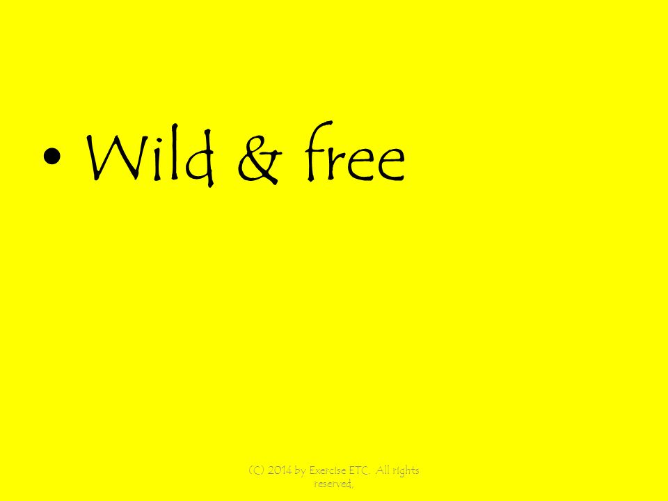 Wild & free (C) 2014 by Exercise ETC. All rights reserved,