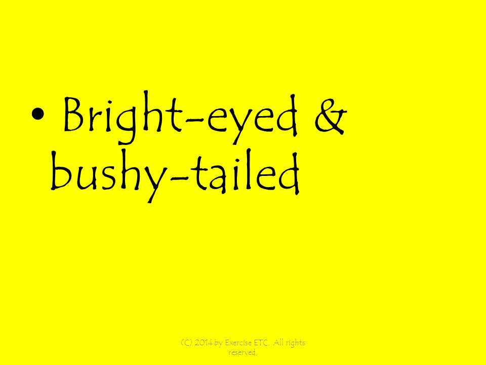 Bright-eyed & bushy-tailed (C) 2014 by Exercise ETC. All rights reserved,