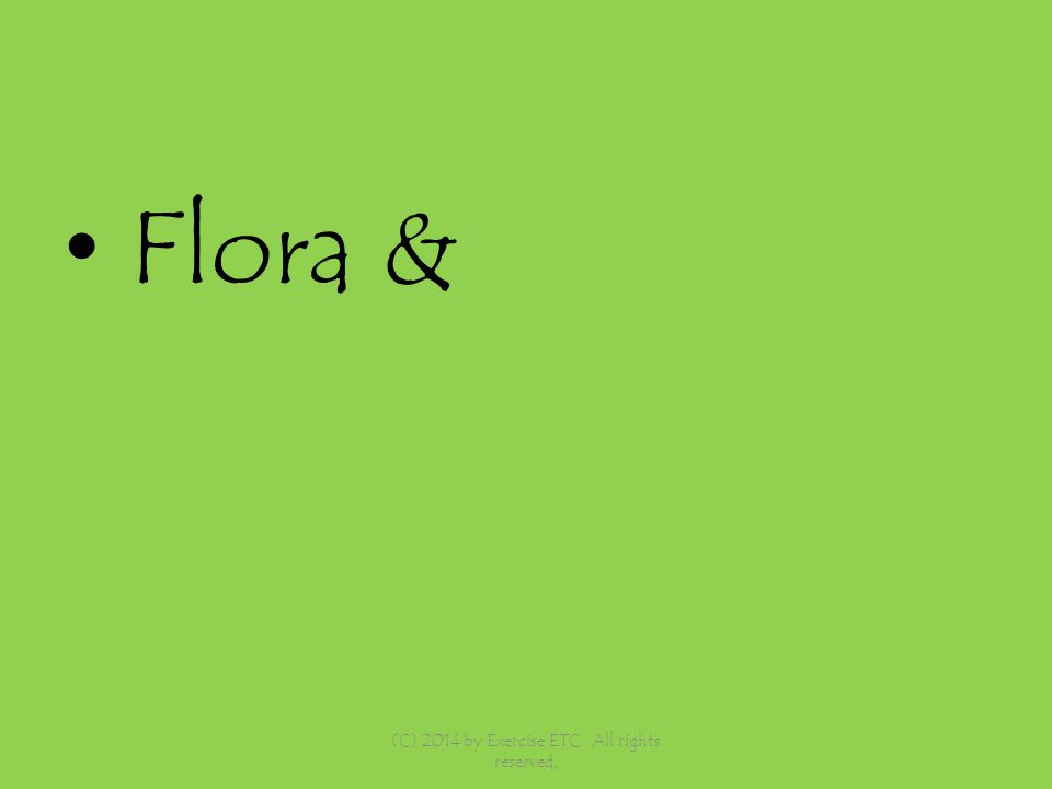 Flora & (C) 2014 by Exercise ETC. All rights reserved,