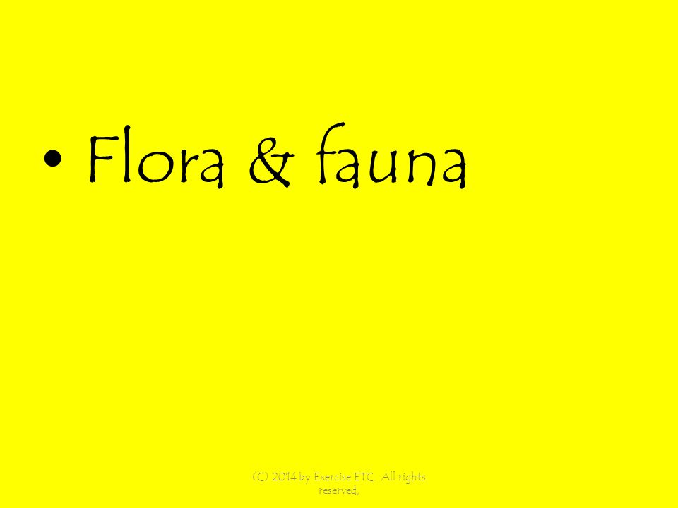 Flora & fauna (C) 2014 by Exercise ETC. All rights reserved,