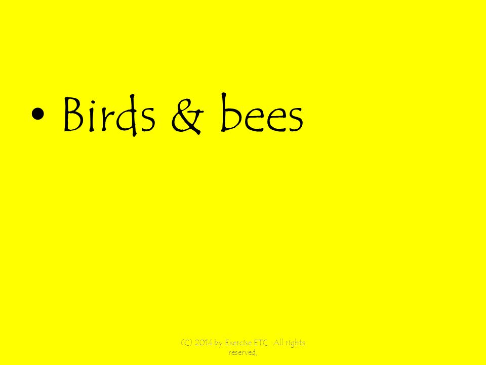 Birds & bees (C) 2014 by Exercise ETC. All rights reserved,