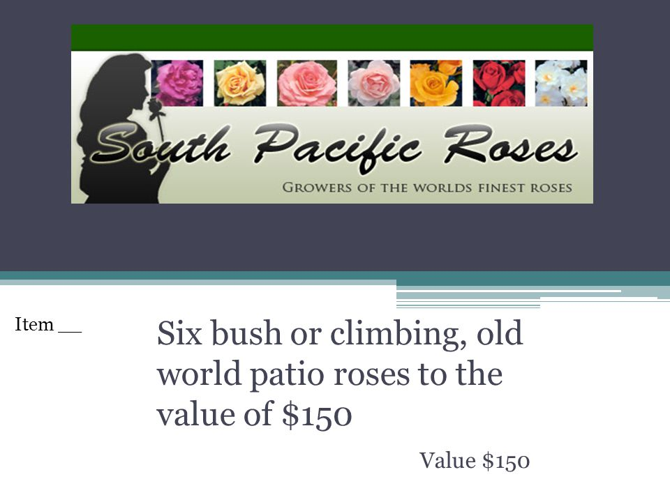 Six bush or climbing, old world patio roses to the value of $150 Value $150 Item __
