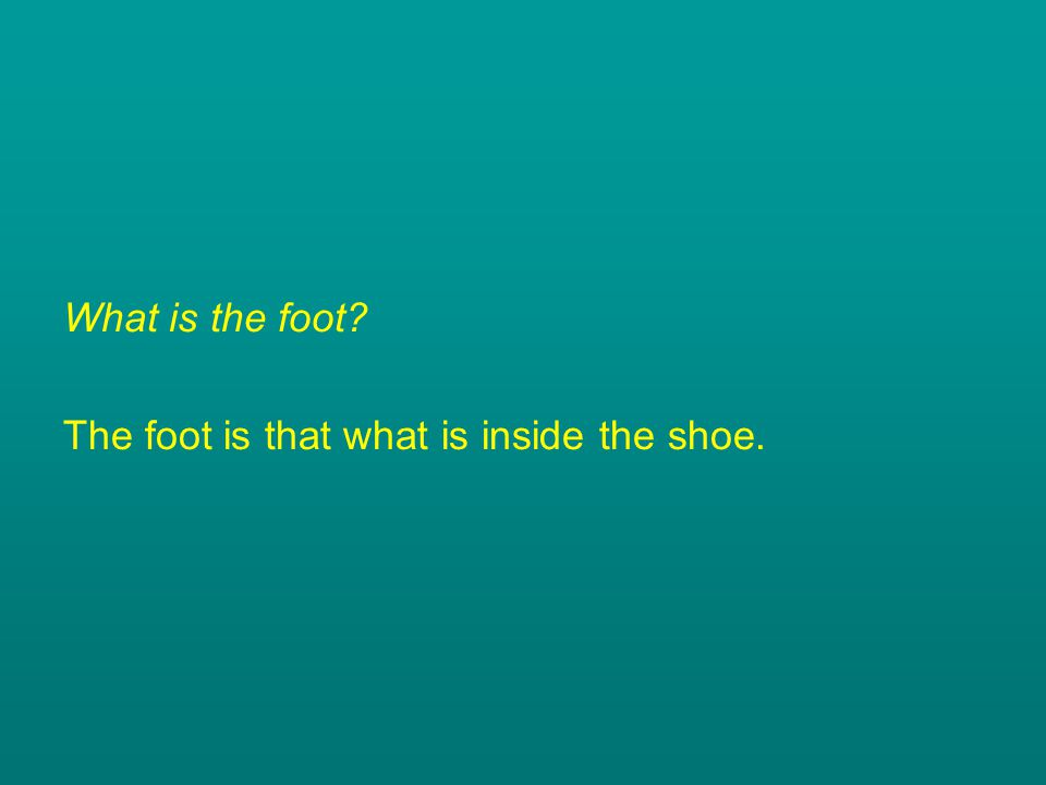 What is the foot? The foot is that what is inside the shoe.