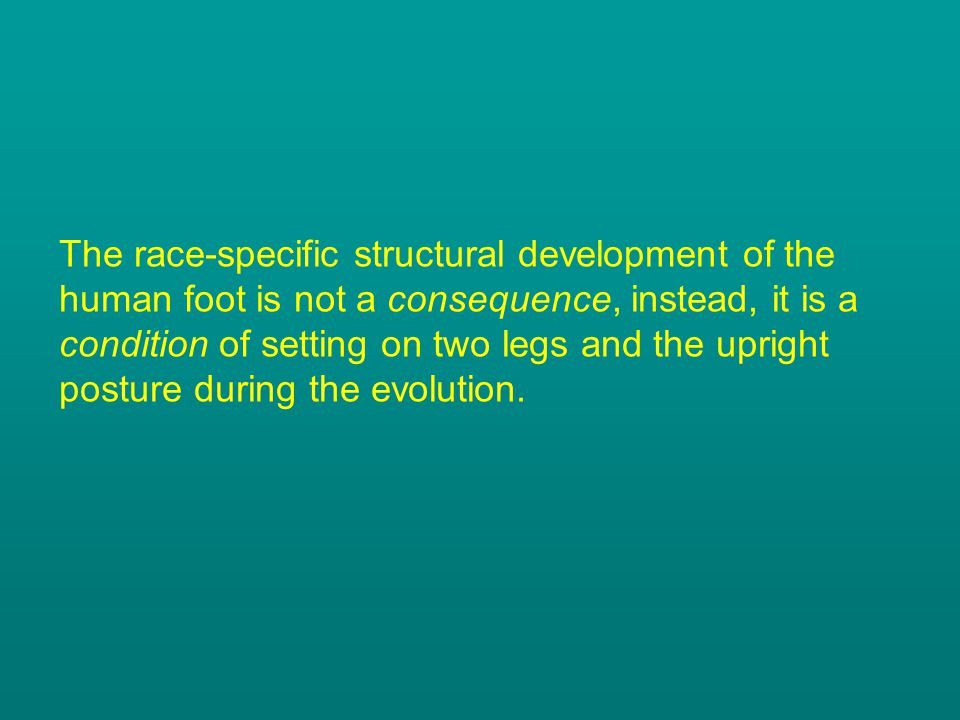 The race-specific structural development of the human foot is not a consequence, instead, it is a condition of setting on two legs and the upright posture during the evolution.