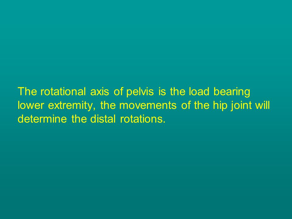 The rotational axis of pelvis is the load bearing lower extremity, the movements of the hip joint will determine the distal rotations.