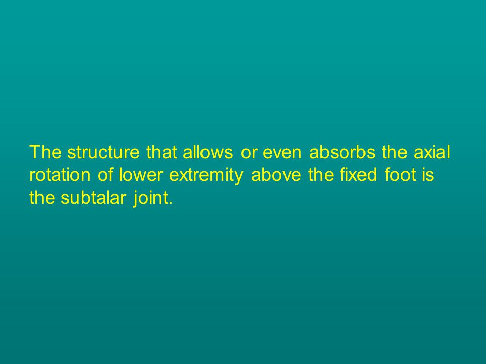 The structure that allows or even absorbs the axial rotation of lower extremity above the fixed foot is the subtalar joint.