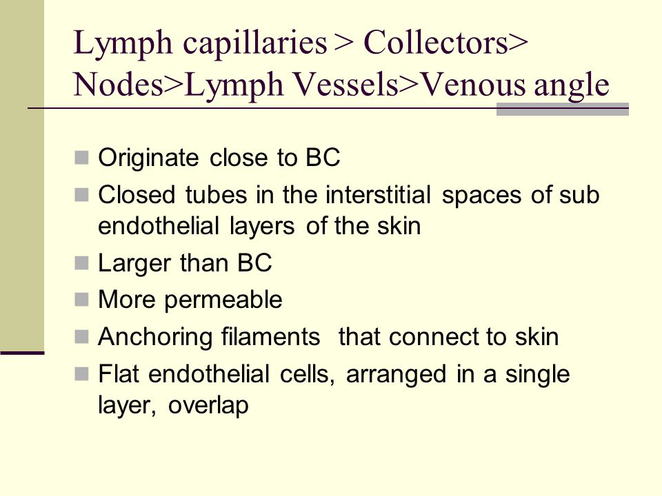 Lymph Collectors Are larger vessels than LC Valves that contract Propel lymph into lymph nodes