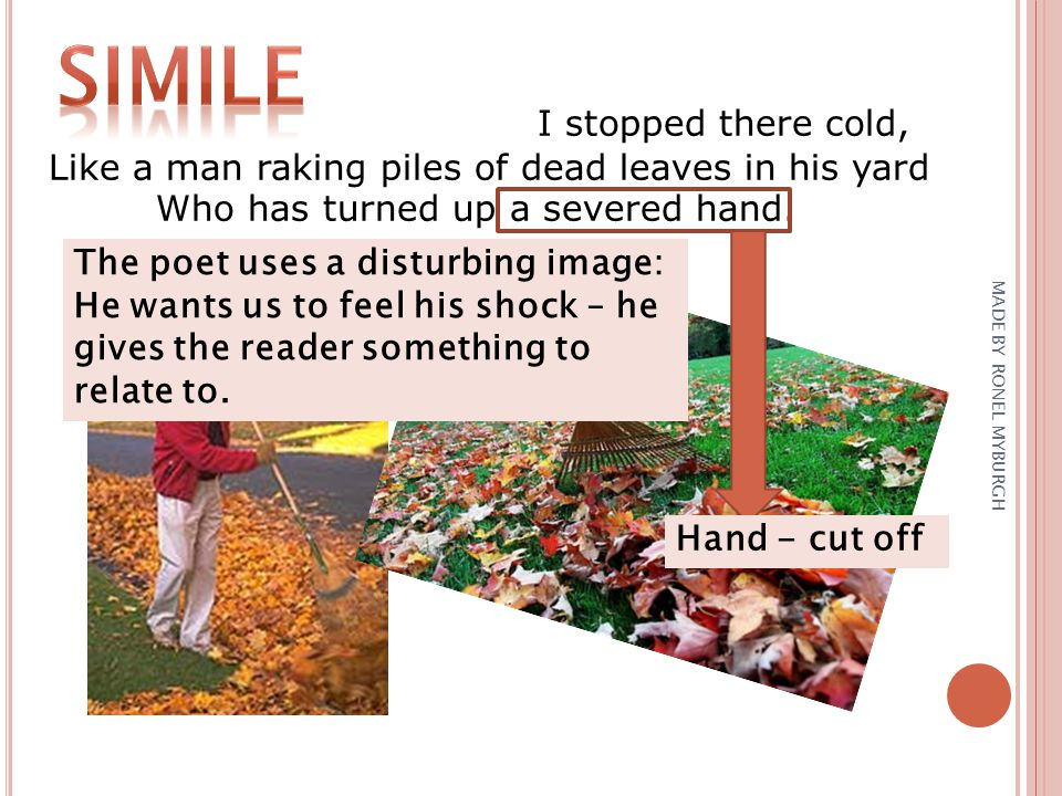 I stopped there cold, Like a man raking piles of dead leaves in his yard Who has turned up a severed hand. The poet uses a disturbing image: He wants