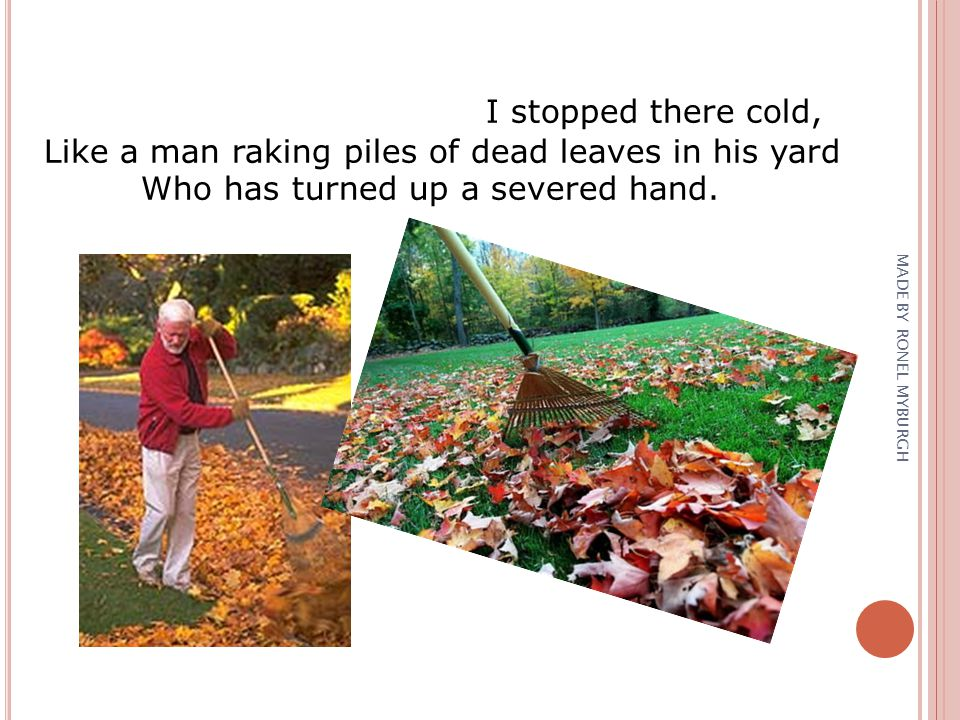 I stopped there cold, Like a man raking piles of dead leaves in his yard Who has turned up a severed hand. MADE BY RONEL MYBURGH