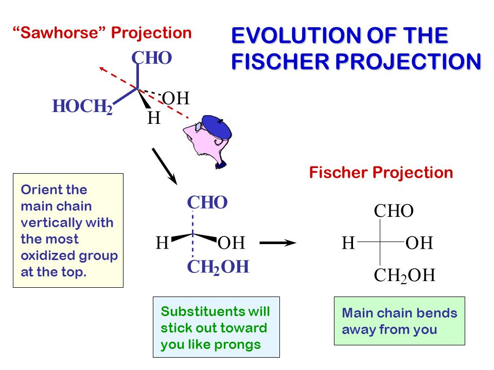 CHO HOCH 2 H OH OHH CHO CH 2 OH H CH 2 OH CHO OH EVOLUTION OF THE FISCHER PROJECTION Substituents will stick out toward you like prongs Fischer Projec