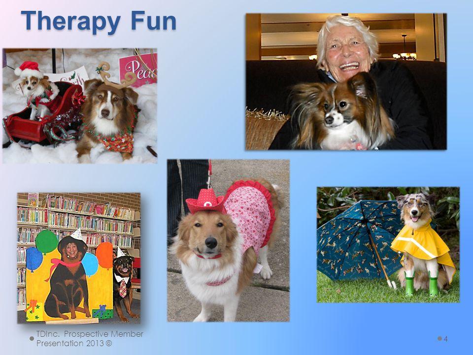 Therapy Fun TDInc. Prospective Member Presentation 2013 © 4