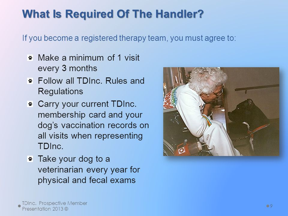 What Is Required Of The Handler? What Is Required Of The Handler? If you become a registered therapy team, you must agree to: Make a minimum of 1 visi