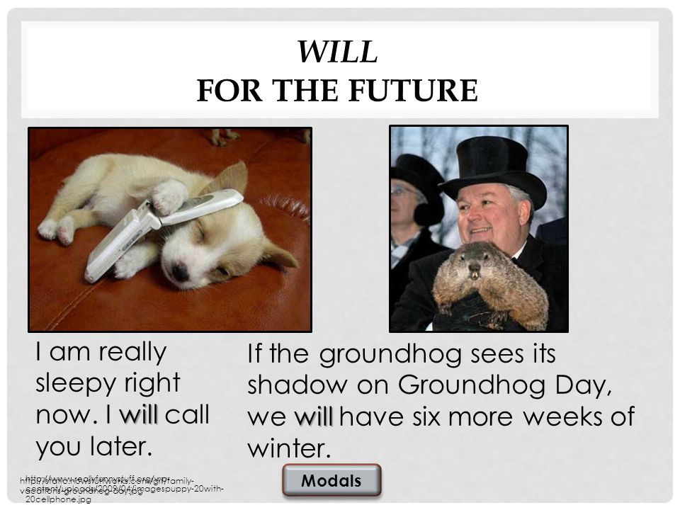 WILL FOR THE FUTURE will If the groundhog sees its shadow on Groundhog Day, we will have six more weeks of winter.