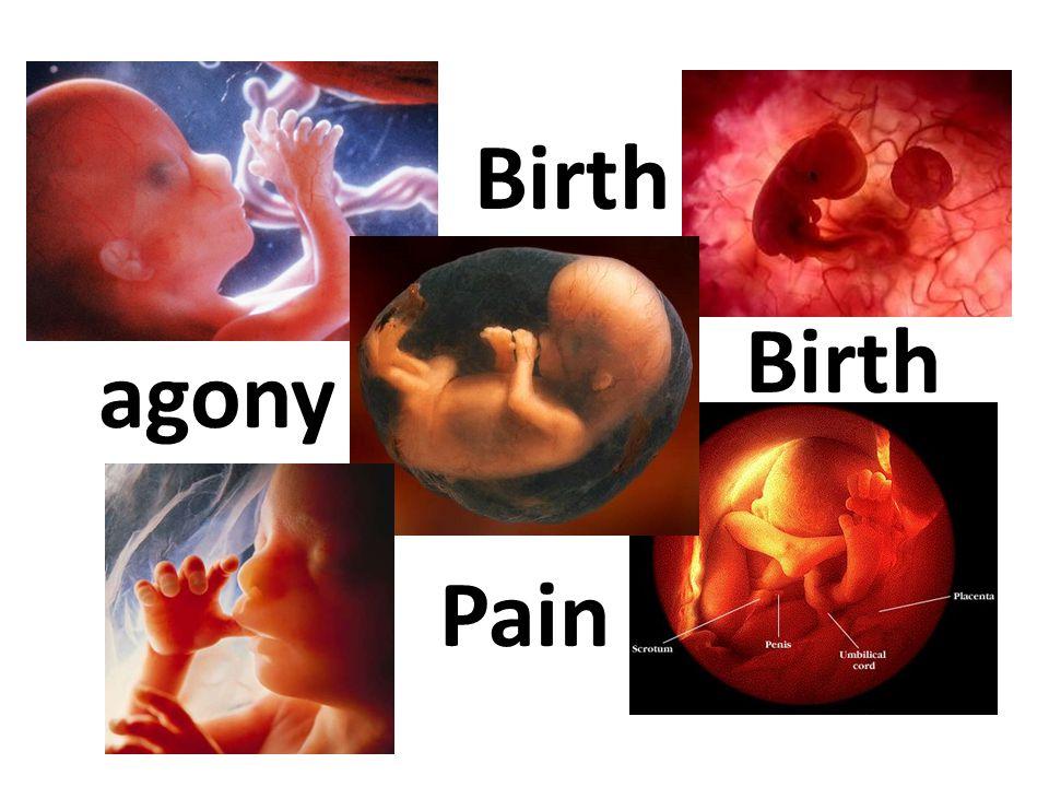 Birth Pain agony