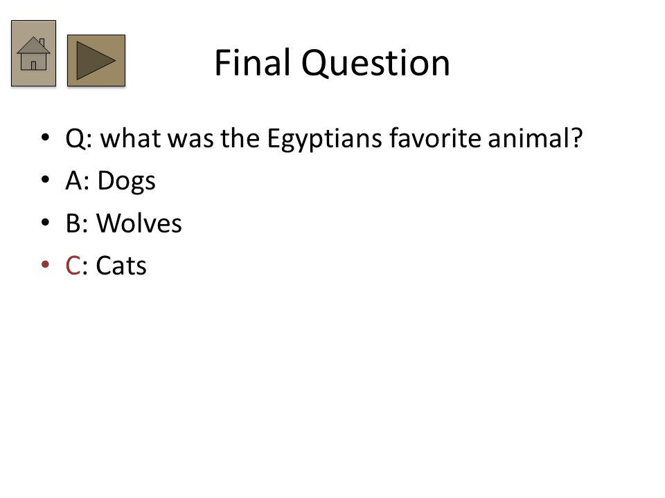 Final Question Q: what was the Egyptians favorite animal A: Dogs B: Wolves C: Cats
