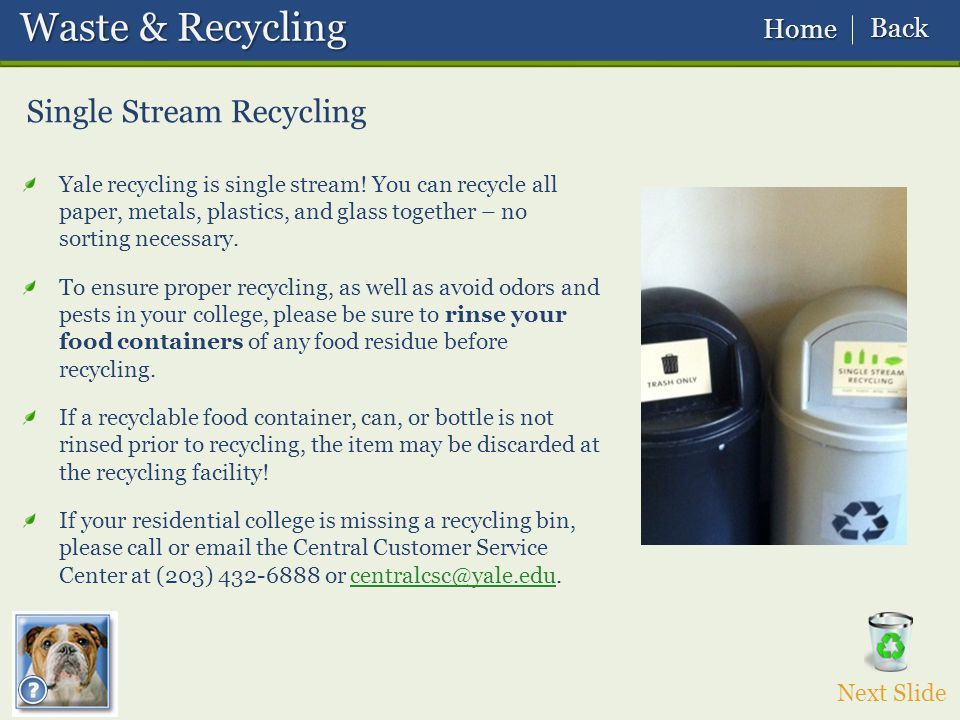 Single Stream Recycling Yale recycling is single stream.