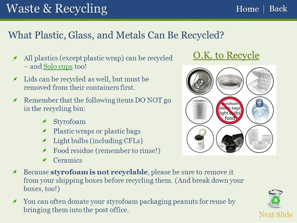 What Plastic, Glass, and Metals Can Be Recycled.