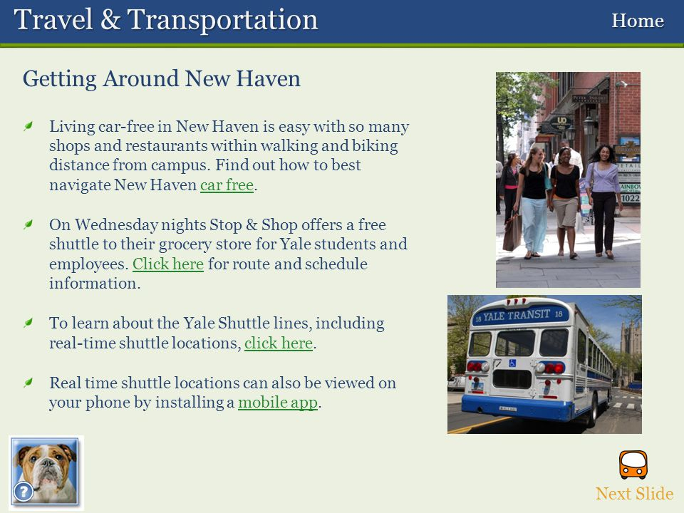 Getting Around New Haven Travel & Transportation Travel & Transportation Home Home Living car-free in New Haven is easy with so many shops and restaurants within walking and biking distance from campus.