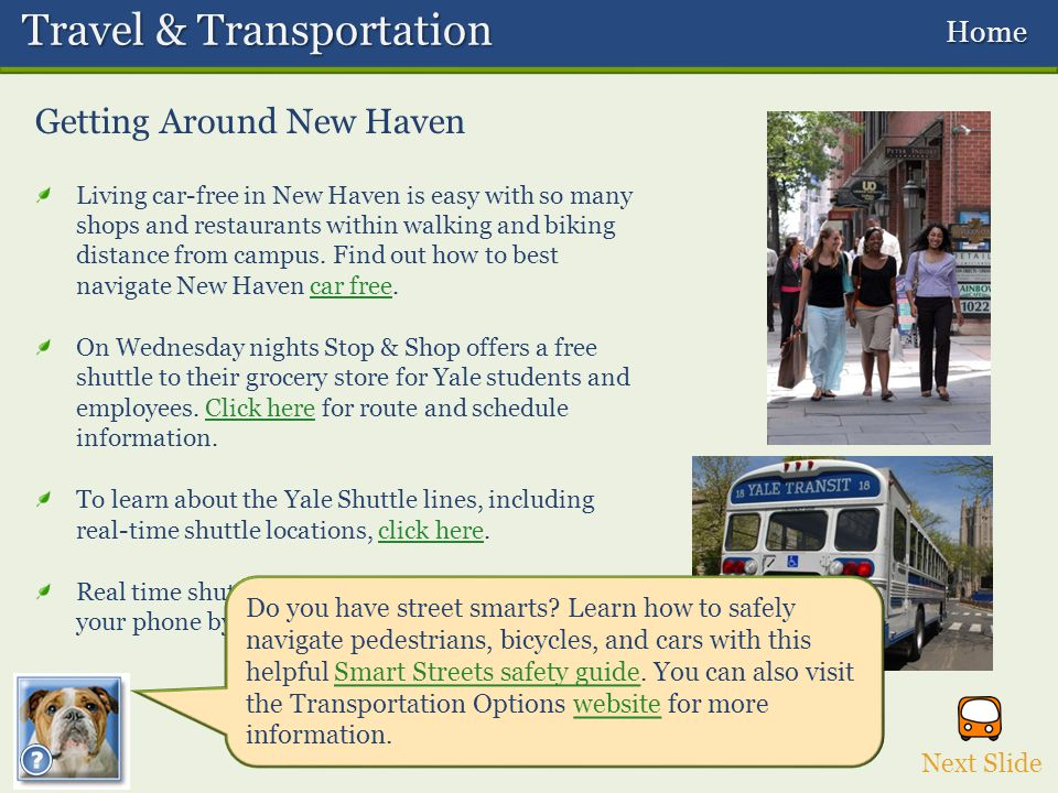 Travel & Transportation Travel & Transportation Home Home Getting Around New Haven Living car-free in New Haven is easy with so many shops and restaurants within walking and biking distance from campus.