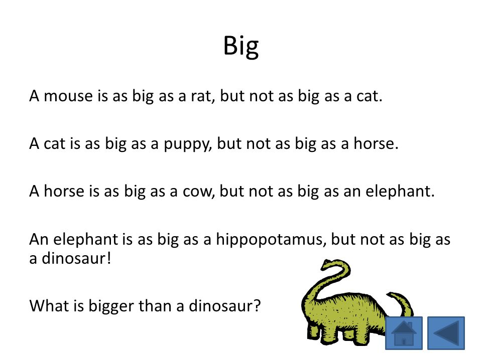 Big A mouse is as big as a rat, but not as big as a cat. A cat is as big as a puppy, but not as big as a horse. A horse is as big as a cow, but not as