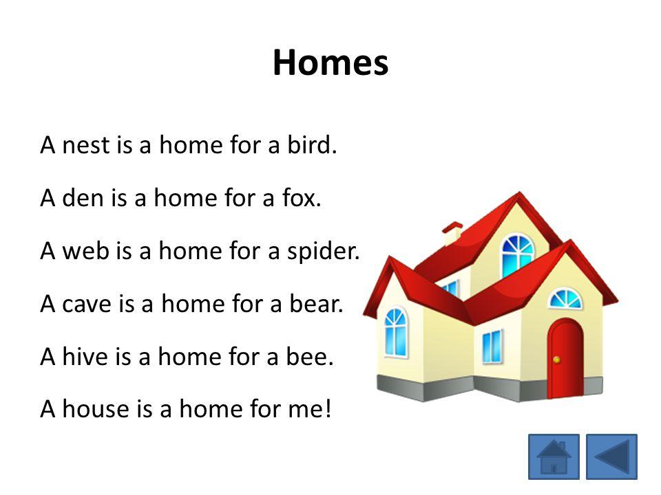 Homes A nest is a home for a bird. A den is a home for a fox. A web is a home for a spider. A cave is a home for a bear. A hive is a home for a bee. A