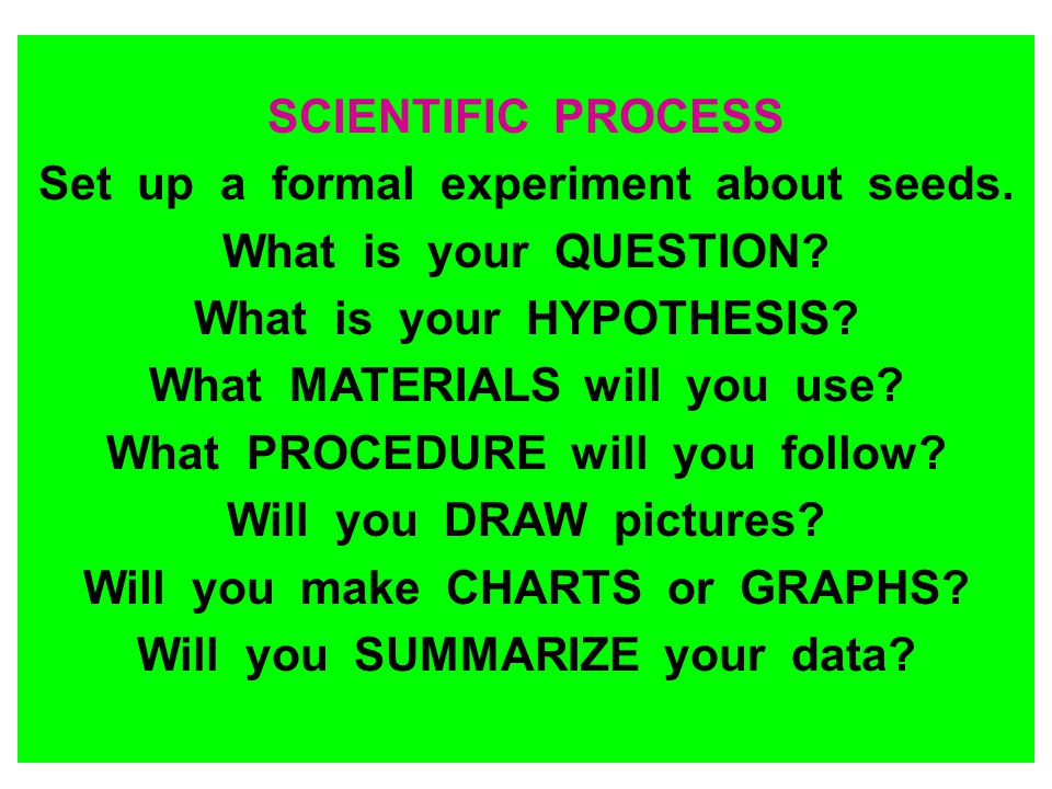 SCIENTIFIC PROCESS Set up a formal experiment about seeds. What is your QUESTION? What is your HYPOTHESIS? What MATERIALS will you use? What PROCEDURE