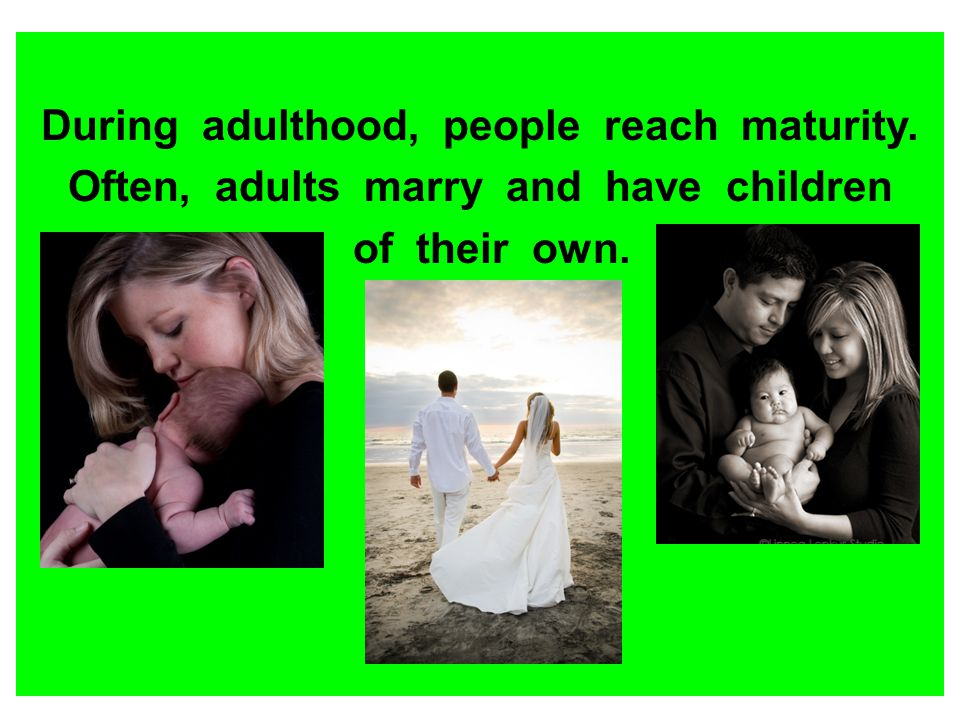 During adulthood, people reach maturity. Often, adults marry and have children of their own.