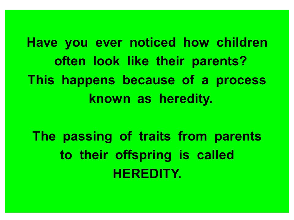 Have you ever noticed how children often look like their parents? This happens because of a process known as heredity. The passing of traits from pare
