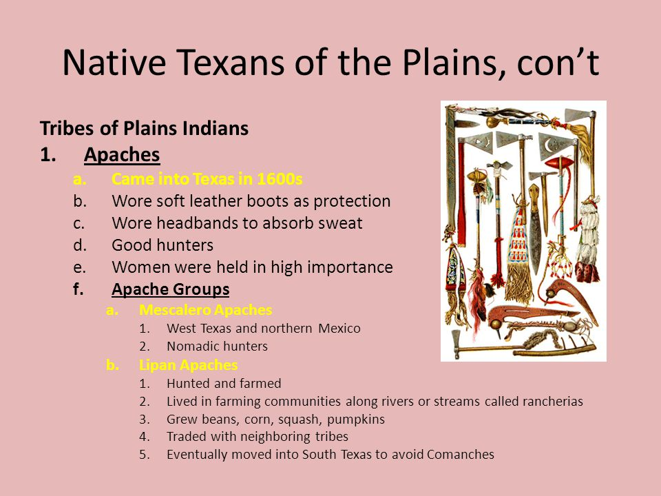 Native Texans of the Plains, cont Tribes of Plains Indians 1.Apaches a.Came into Texas in 1600s b.Wore soft leather boots as protection c.Wore headban