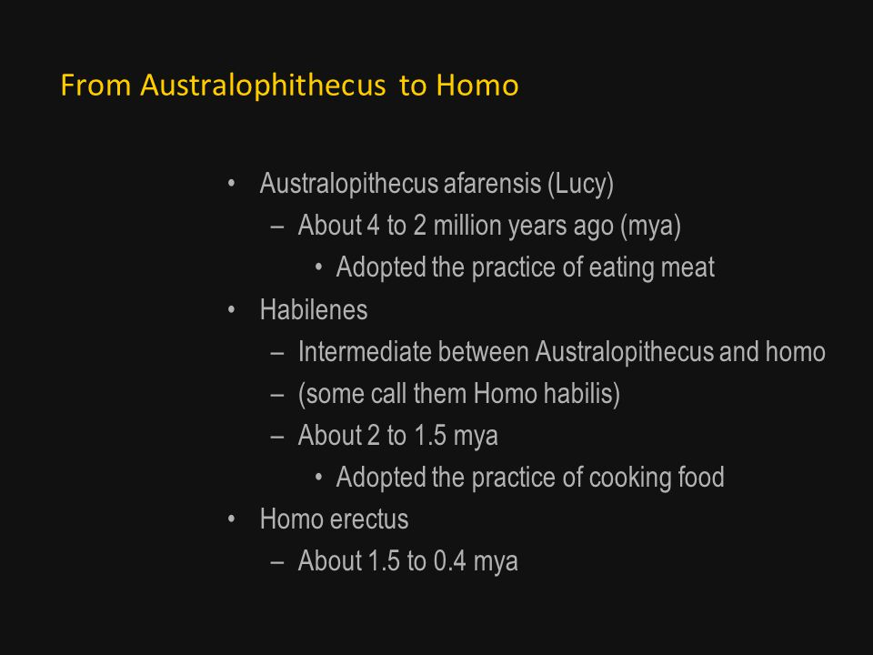 From Australophithecus to Homo Australopithecus afarensis (Lucy) –About 4 to 2 million years ago (mya) Adopted the practice of eating meat Habilenes –Intermediate between Australopithecus and homo –(some call them Homo habilis) –About 2 to 1.5 mya Adopted the practice of cooking food Homo erectus –About 1.5 to 0.4 mya