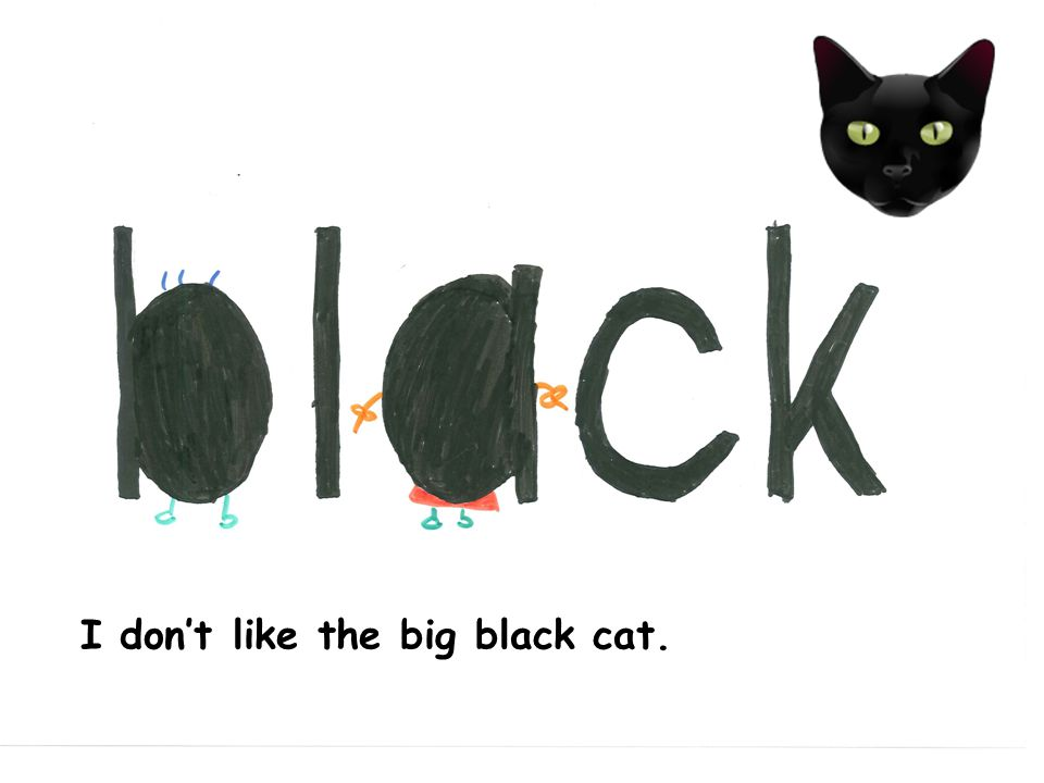 I dont like the big black cat.