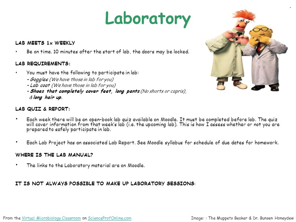 Laboratory LAB MEETS 1x WEEKLY Be on time.