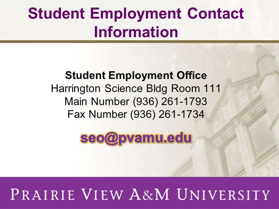 Student Employment Contact Information