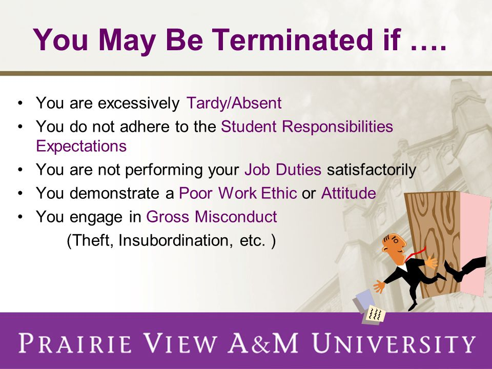 Student Employment Grievances View Complete Procedure Online at http://www.pvamu.edu/pages/1660.asp http://www.pvamu.edu/pages/1660.asp Complaints must be made within 7 business days of the action which caused the complaint SEO will serve as mediator between department and student