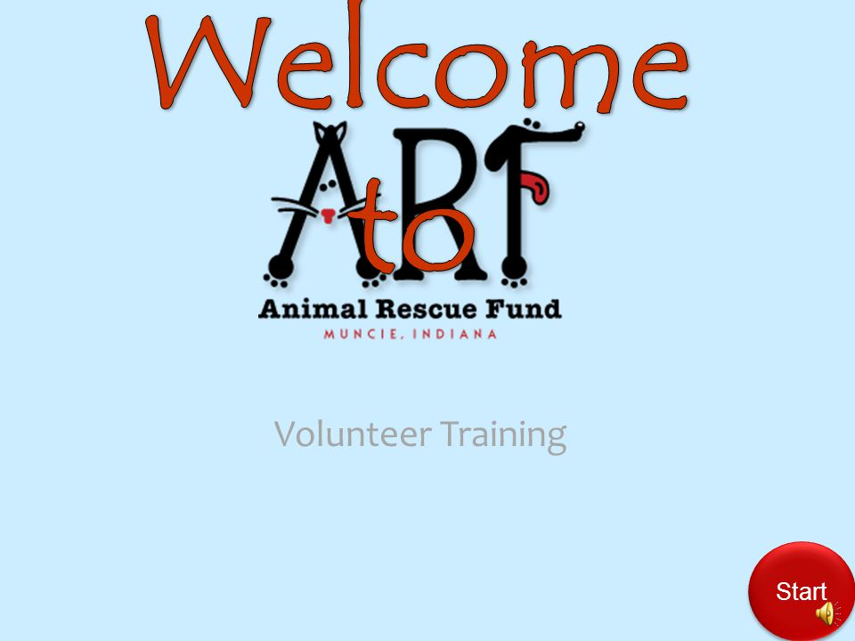 Should you get injured during your time volunteering with ARF, who would responsible for those injuries.