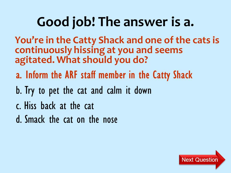 Youre in the Catty Shack and one of the cats is continuously hissing at you and seems agitated.
