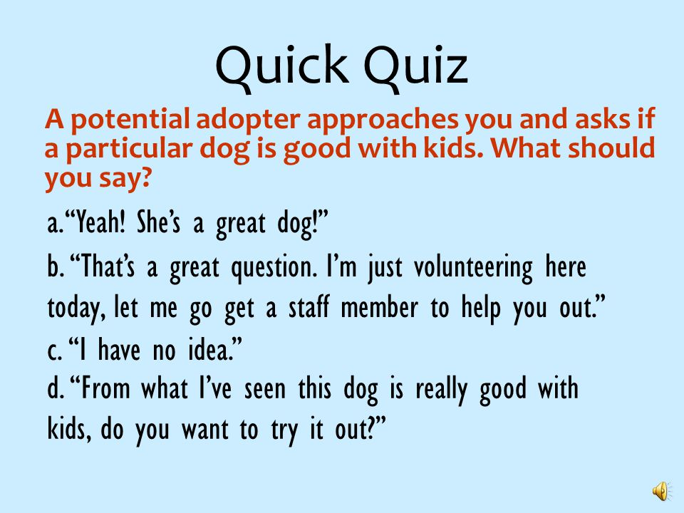Quick Quiz Should you get injured during your time volunteering with ARF, who would responsible for those injuries.
