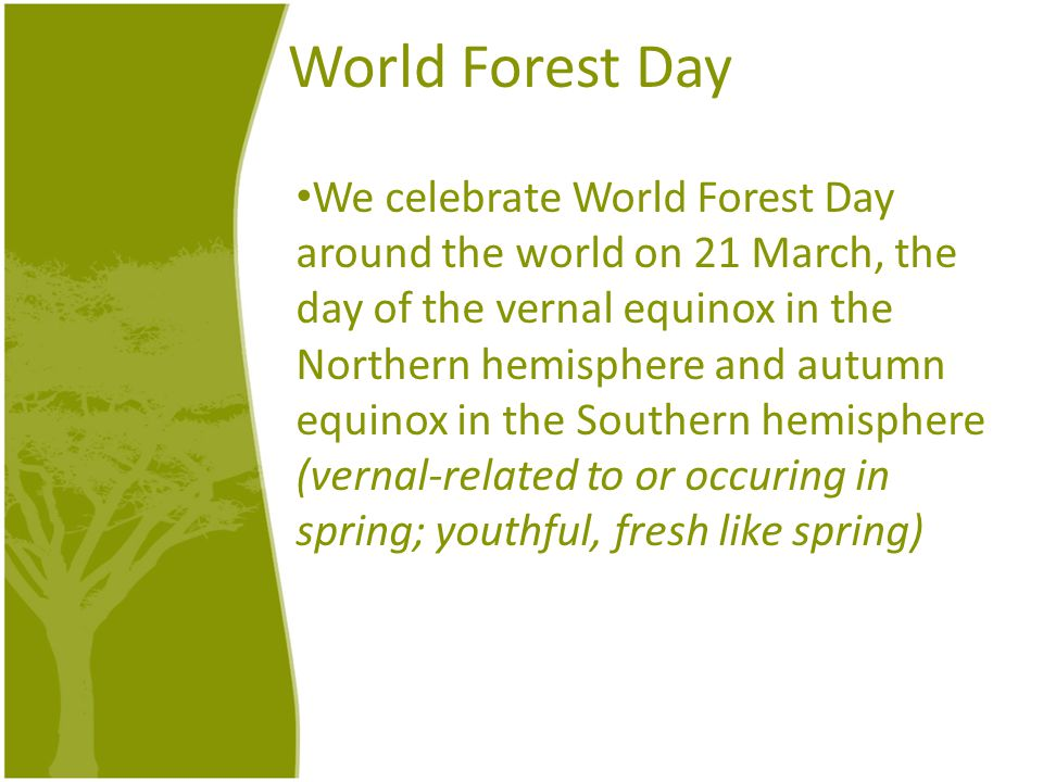 World Forest Day We celebrate World Forest Day around the world on 21 March, the day of the vernal equinox in the Northern hemisphere and autumn equin