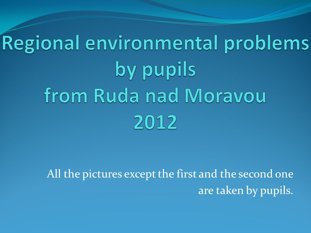All the pictures except the first and the second one are taken by pupils.