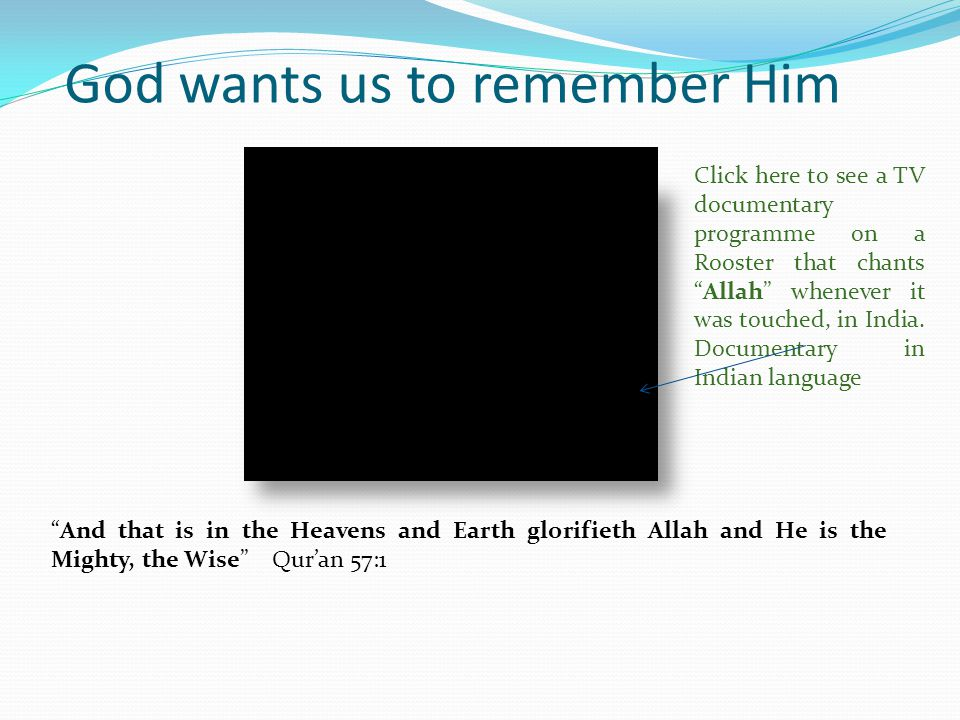 God wants us to remember Him Mawlana Sheikh Baba Harazimi(RA) delivering Sufism lecture on the need to remember Allah constantly and have Allah in ones focus.