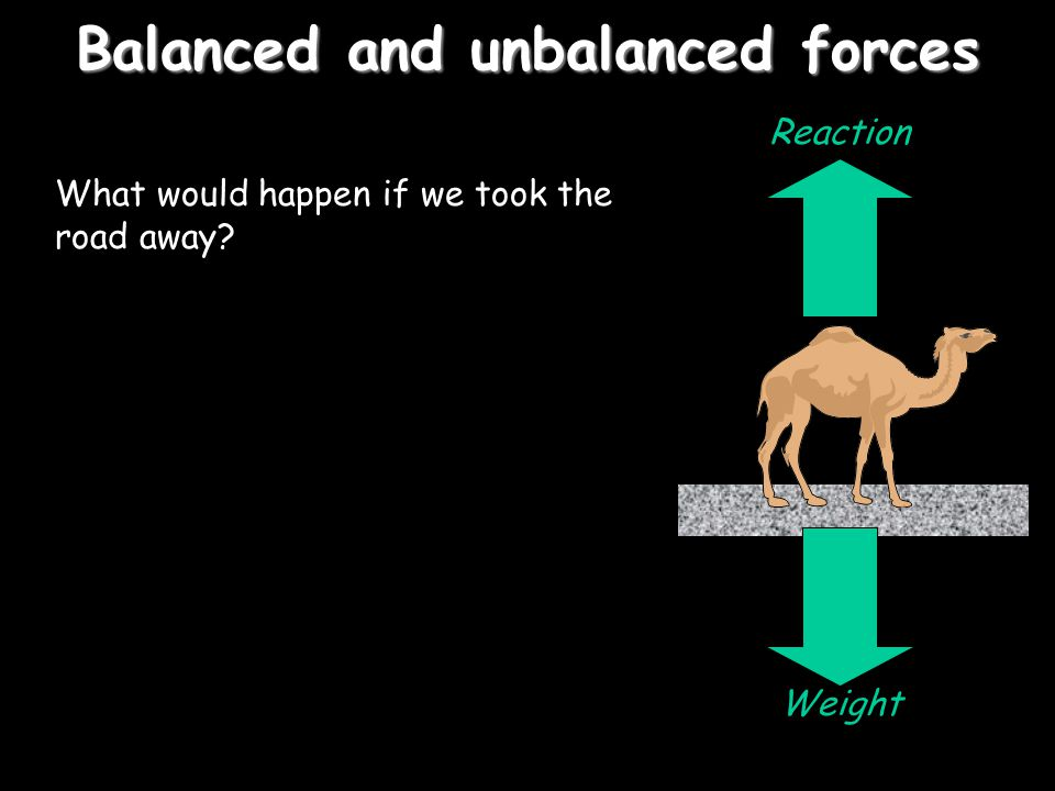 Balanced and unbalanced forces Consider a camel standing on a road. What forces are acting on it? Weight Reaction These two forces would be equal – we
