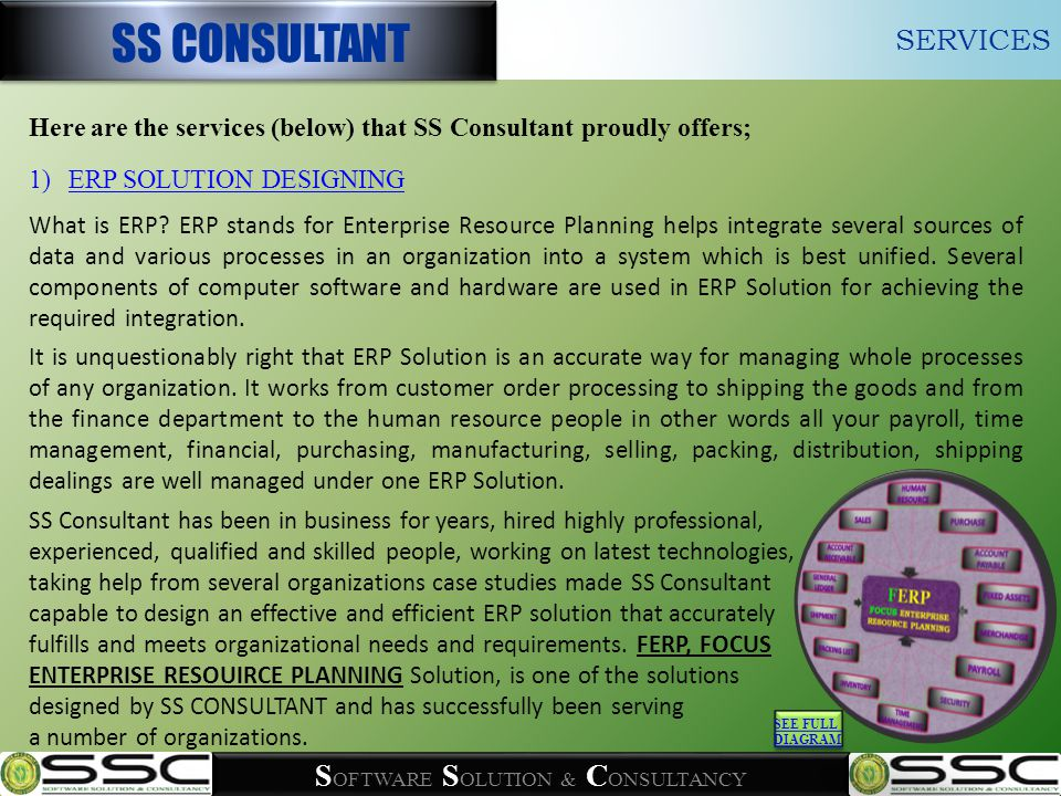 S OFTWARE S OLUTION & C ONSULTANCY FOCUS-ERP SS CONSULTANT