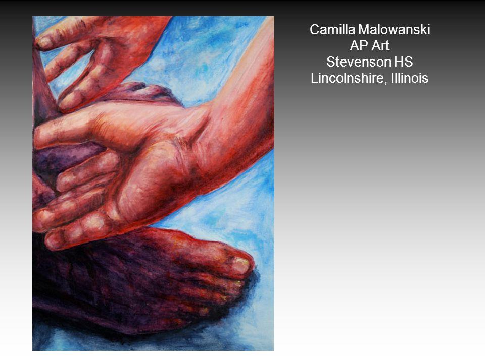 Camilla Malowanski AP Art Stevenson HS Lincolnshire, Illinois