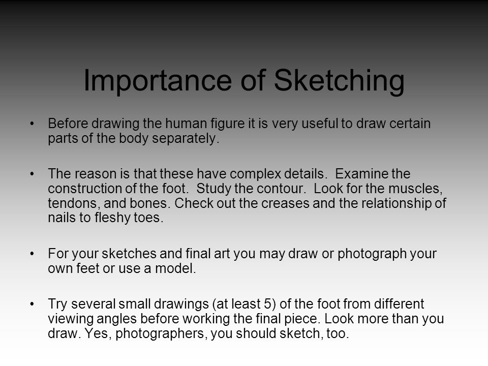 Importance of Sketching Before drawing the human figure it is very useful to draw certain parts of the body separately. The reason is that these have