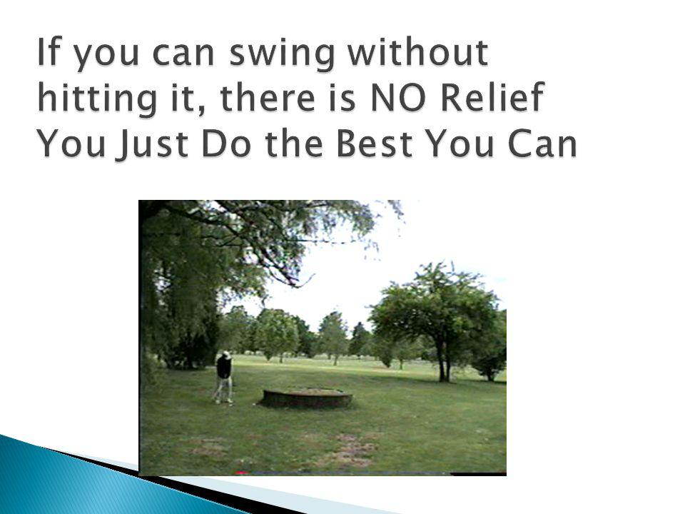 There is NO relief for intervention on your line of play. NO line of sight relief. Only for INTERFERENCE