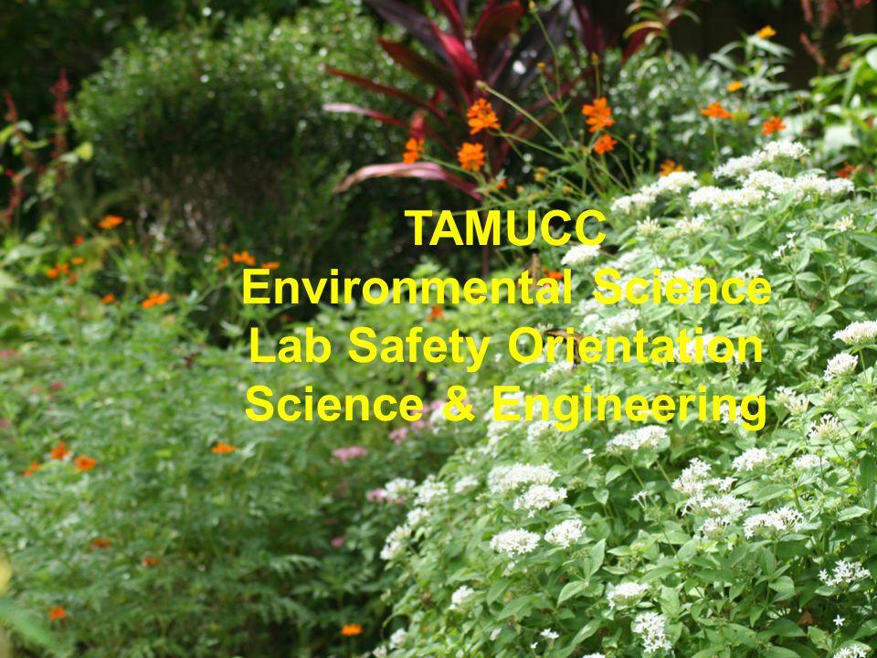 TAMUCC Environmental Science Lab Safety Orientation Science & Engineering