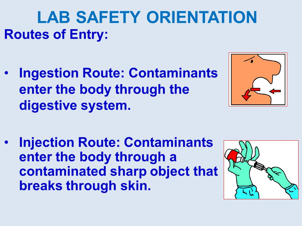 Routes of Entry: Ingestion Route: Contaminants enter the body through the digestive system. Injection Route: Contaminants enter the body through a con