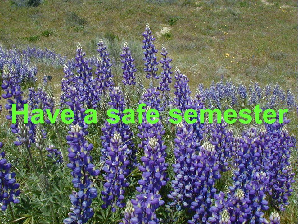 Have a safe semester